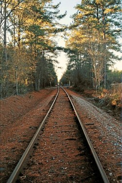 Railroad tracks in Ruffin, SC