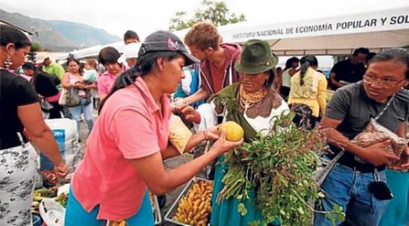 """""""Truque"""" Fruta a cambio de plantas medicinales. intercambio de productos."""