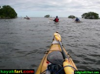Miami Flamingo kayakfari florida bay flex maslan 029 digital029art short key dragover turkey point key largo keys everglades kayak nest key black betty end key shark point chickee paddlle kayakfari.com digital029art.com