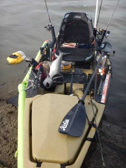 Kayakfish5 - 1