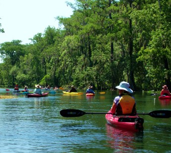 KAYAK SILVER SPRINGS