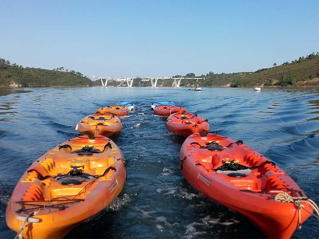 Kayaks Tour