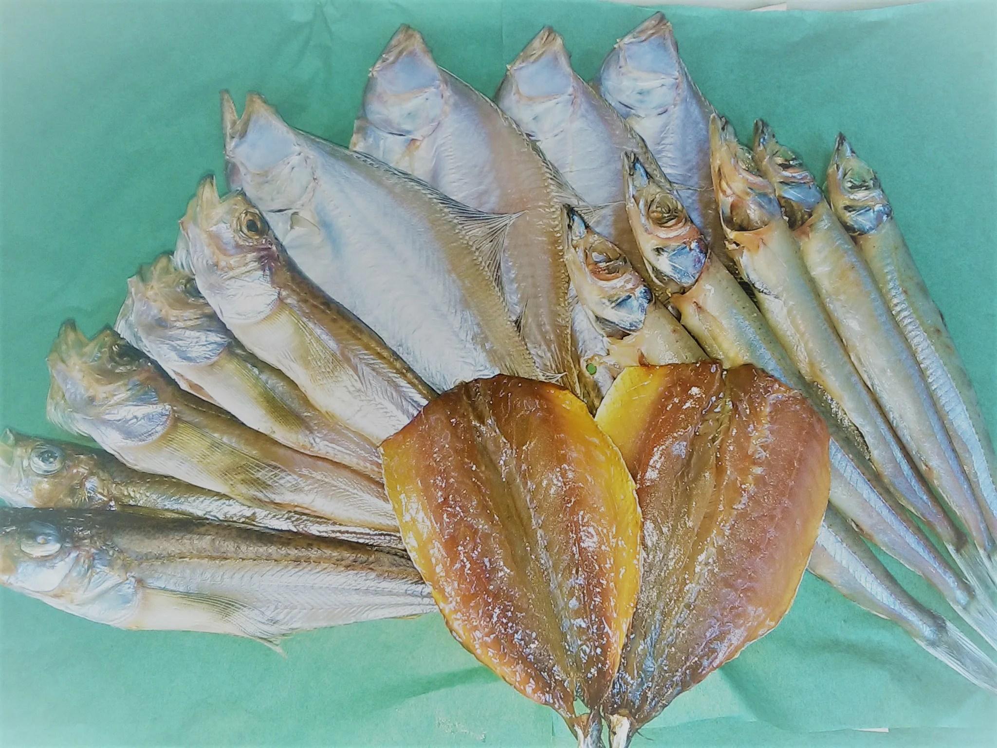 沖キス – シロハタ – エテカレイ – アジみりん干し – 干物セット
