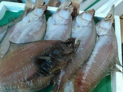 魚介類 宅配サービス エテガレイ干物