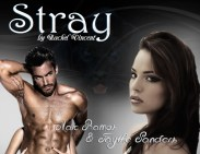 Stray Marc Ramos and Faythe Sanders by Rachel Vincent