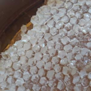 Doğal Şekersiz Karakovan Balı