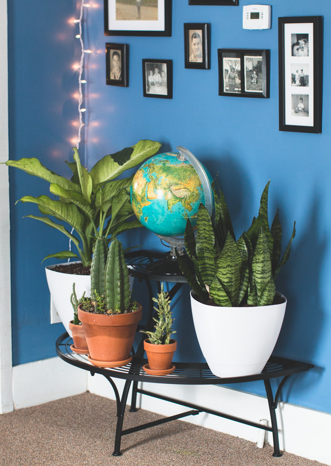 black plant stand, semi-circular plant stand