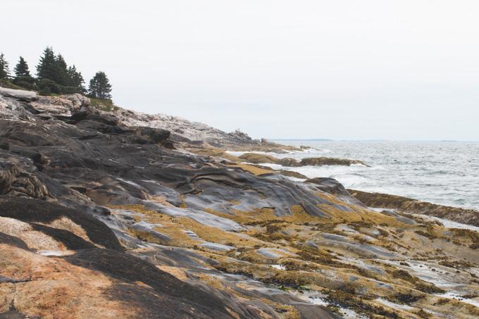 Tidepool, Atlantic Ocean