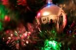 Christmas Bulb Portrait