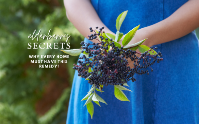 Elderberry Secrets; Why every home must have this remedy!