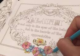 Colouring pencils and markers: My favourite pencils and best option for my new colouring book is wax pencils like Polychromos