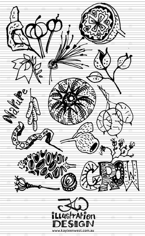 INKtober 2014. An inked sketch each day for the month of October. Nature study - seed pods for a surface design illustration. #inktober