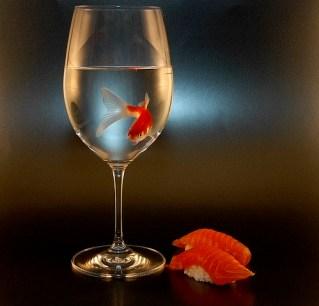 fish-in-wine-glass