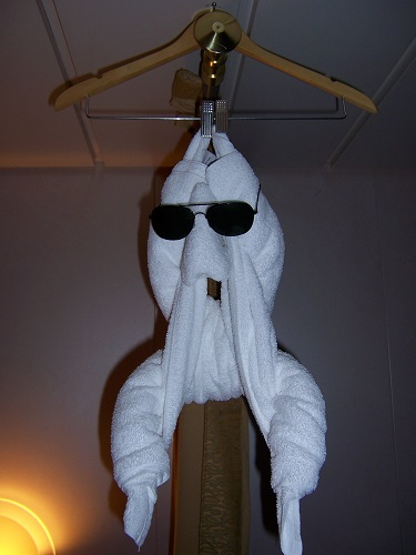 Tonight's towel monkey