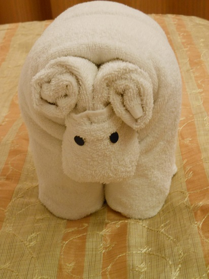 Tonight's towel animal