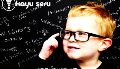 arti kognitif - Mainan Edukatif Meningkatkan Kemampuan Kognitif