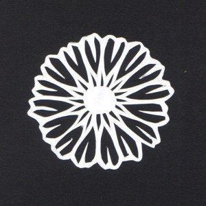 daisy on white paper