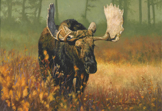 """Formidable"" (Bull Moose) ©Kay Witherspoon, 9"" x 12"", oil on linen covered hardboard (SOLD), canvas giclée prints available"