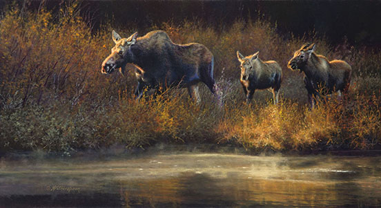 """Moose Creek Drifters (Moose) ©Kay Witherspoon, 12"" x 22"", oil on linen, Award of Excellence by the Society of Animal Artists, canvas giclée prints available"