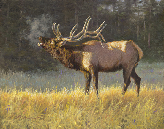 """On Sacred Ground"" (Bull Elk) ©Kay Witherspoon, 11"" x 14"", (SOLD), canvas giclée print available"
