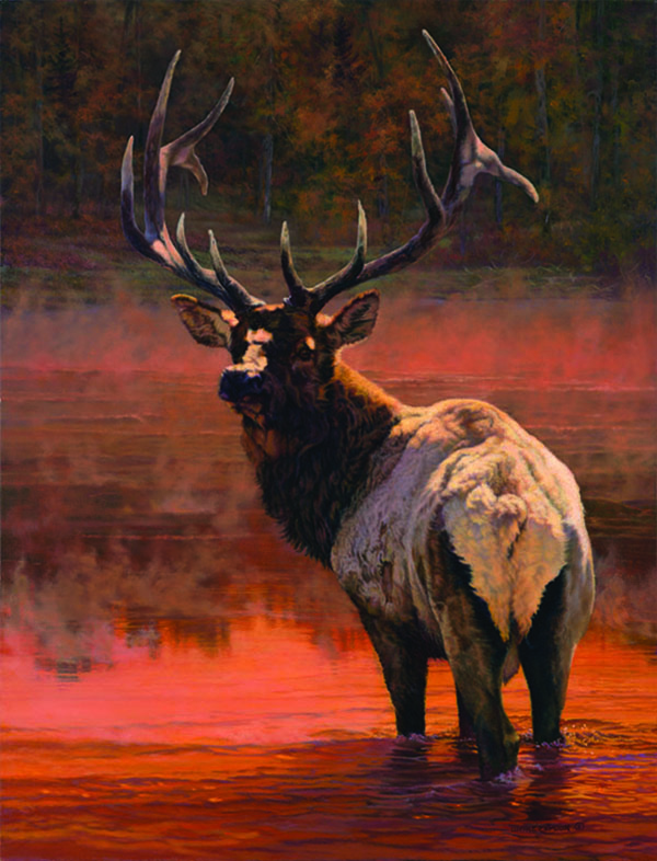 """Twilight Crossing"" (Bull Elk) ©Kay Witherspoon, 42"" x 32"", oil on linen (SOLD), canvas giclée print available"