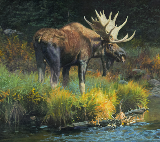 """Narcissus"" (Bull Moose) © Kay Witherspoon, 18"" x 20""  oil on linen"