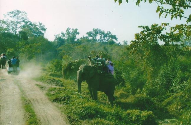 Kaziranga Safari, Elephant Safari Kaziranga, Jeep Safari Kaziranga National Park