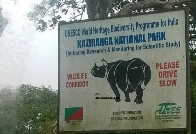 Kaziranga National Park, Kaziranga, Kaziranga Hotels, Kaziranga Resorts, Kaziranga Safari