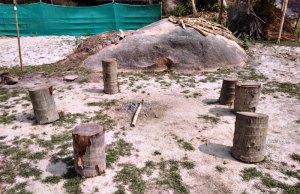 Pobitora Wildlife Sanctuary, Kaziranga National Park, Resorts Pobitora, Safari Pobitora