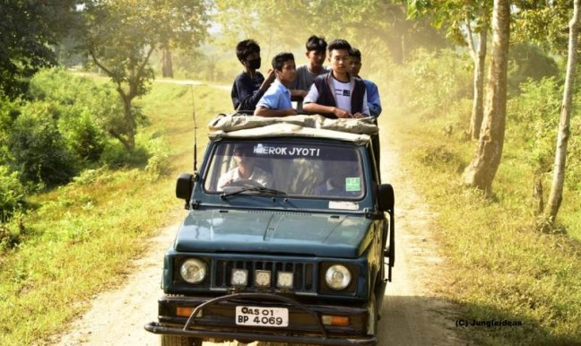 Kaziranga National Park, Jeep Safari Kaziranga, Elephant Safari, Kaziranga Tours