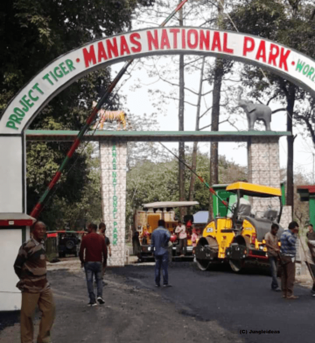 Kaziranga National Park, Manas National Park, Manas Hotels, Manas Safari