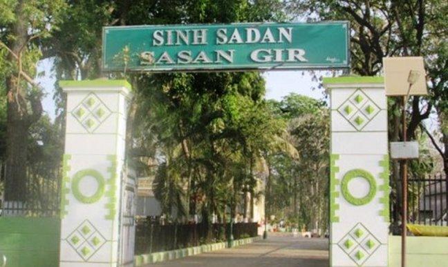Gir National Park, Gir Hotels, Gir Resorts, Gir Safari, Kaziranga