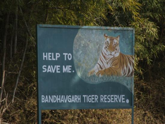 Bandhavgarh National Park, Bandhavgarh Safari, Kaziranga, Bandhavgarh Hotels