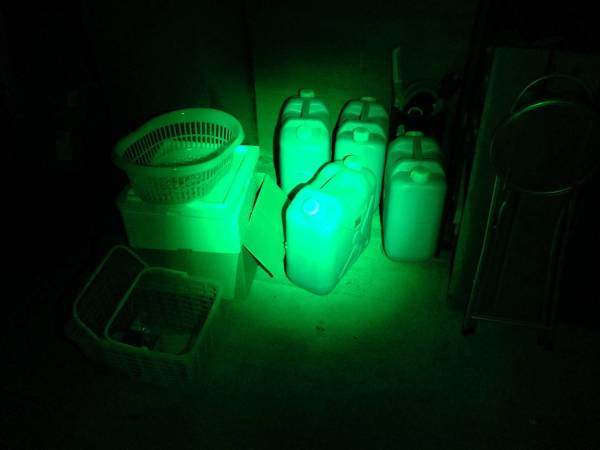 Weltop-11led-white-green-red013
