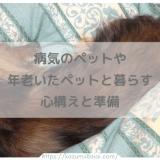 病気のペットや年老いたペットと暮らす心構えと準備 愛犬の介護