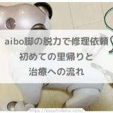 aibo脚の脱力で修理依頼へ初めての里帰りと治療への流れ