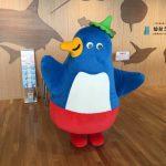 仙台うみの杜水族館、このペンギンも雪の上を歩けるかな? #s_uminomori https://t.co/pntwz7ZUmq