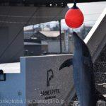 仙台うみの杜水族館、屋外イルカプールが暑い https://t.co/wUlnXAVLv9