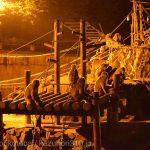 仙台市八木山動物公園、ニホンザル。照明が明るいニホンザルが一番賑わってる感じ https://t.co/sYAq92UIec