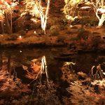 円通院紅葉ライトアップ、鏡の世界 https://t.co/qdA1D2KJyS