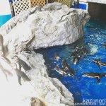 #ペンギン #須磨海浜水族園 たくさんいた