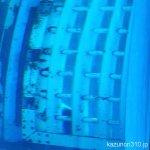 #イロワケイルカ #仙台うみの杜水族館 #iPhone7Plus チラッ