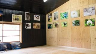農家古民家カフェ「しぜんのおと」さんでの写真展が始まりました。