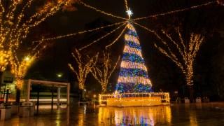 クリスマスムードMAXのクリスマスツリーイルミネーションを見に行くin金沢・タテマチストリート