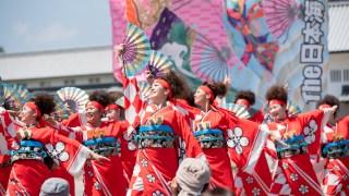 金沢ゆめ街道2019~よさこい~
