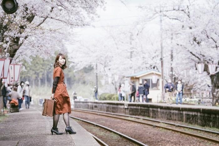 能登鹿島駅の桜ポートレート