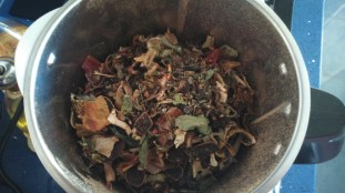 Homemade compost 5
