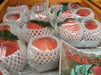 桃の出荷始まりました♩ 41