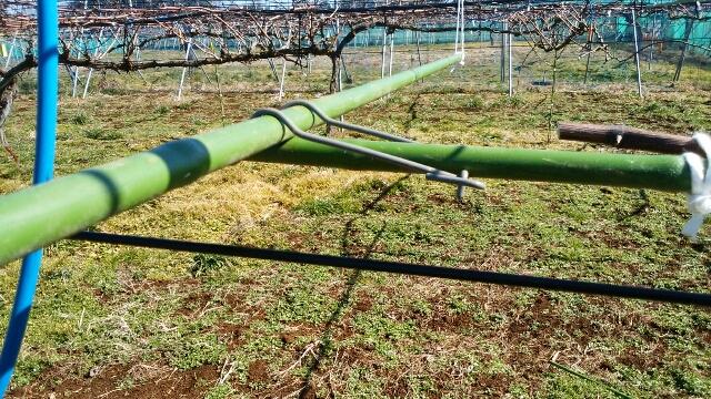 【ブドウ棚の作り方】短梢樹形の支柱設置に便利な道具 49