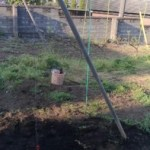 V字ジョイント用の果樹棚の作り方 37